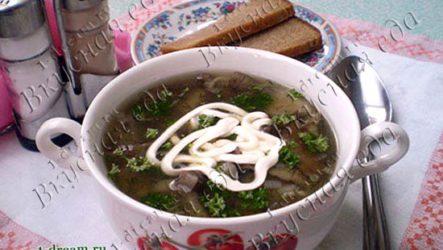 Суп из опят-рецепт с фото