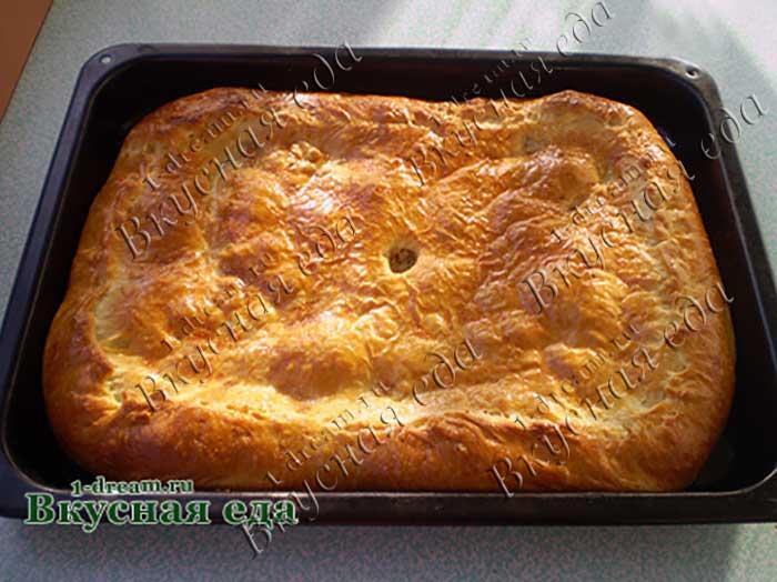 Дрожжевой пирог с капустой и мясом-рецепт с фото