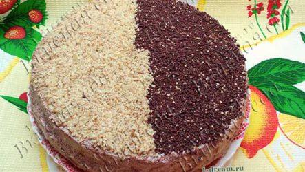 Шоколадный торт с орехами-рецепт с фото