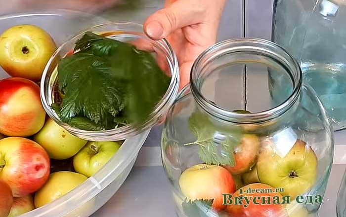 Разложить яблоки в банки с листьями смородины