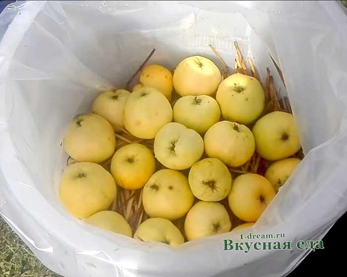 Солома и яблоки