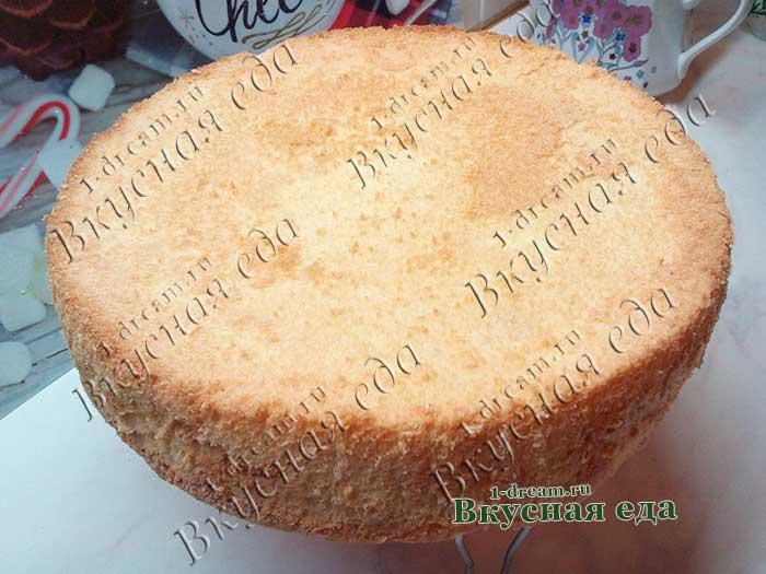 Бисквит для торта готов