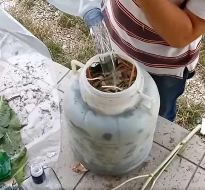 Залить рассолом